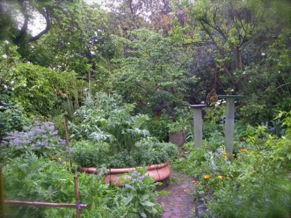 23rd st garden